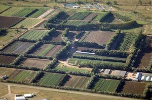 aerial view of nursery